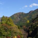 kawamurafumio_20141116a